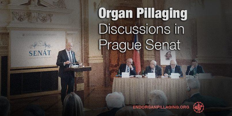 Organ Pillaging Discussions in Prague Senat | The ...